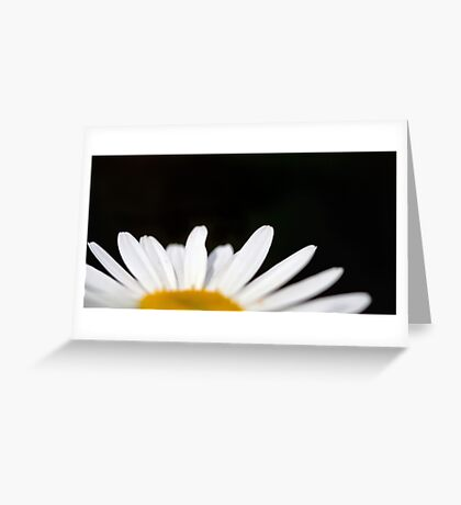 Select Daisy Greeting Card