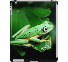 Watching from behind the glass iPad Case/Skin
