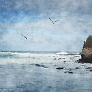 Pulpit Rock, Cape Schanck by Margi