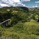 Monsall Dale by Mike Topley