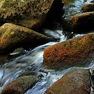 Padley Gorge by Mike Topley