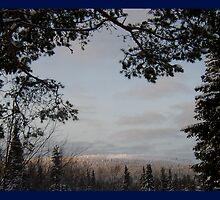 Winter Framed by Polaris-RB