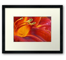 Overwhelming Beauty Framed Print