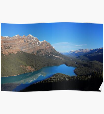Peyto Lake Reflections Poster