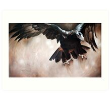 """Alight - The Wedge-tailed Eagle"" Art Print"