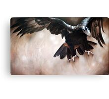 """Alight - The Wedge-tailed Eagle"" Canvas Print"