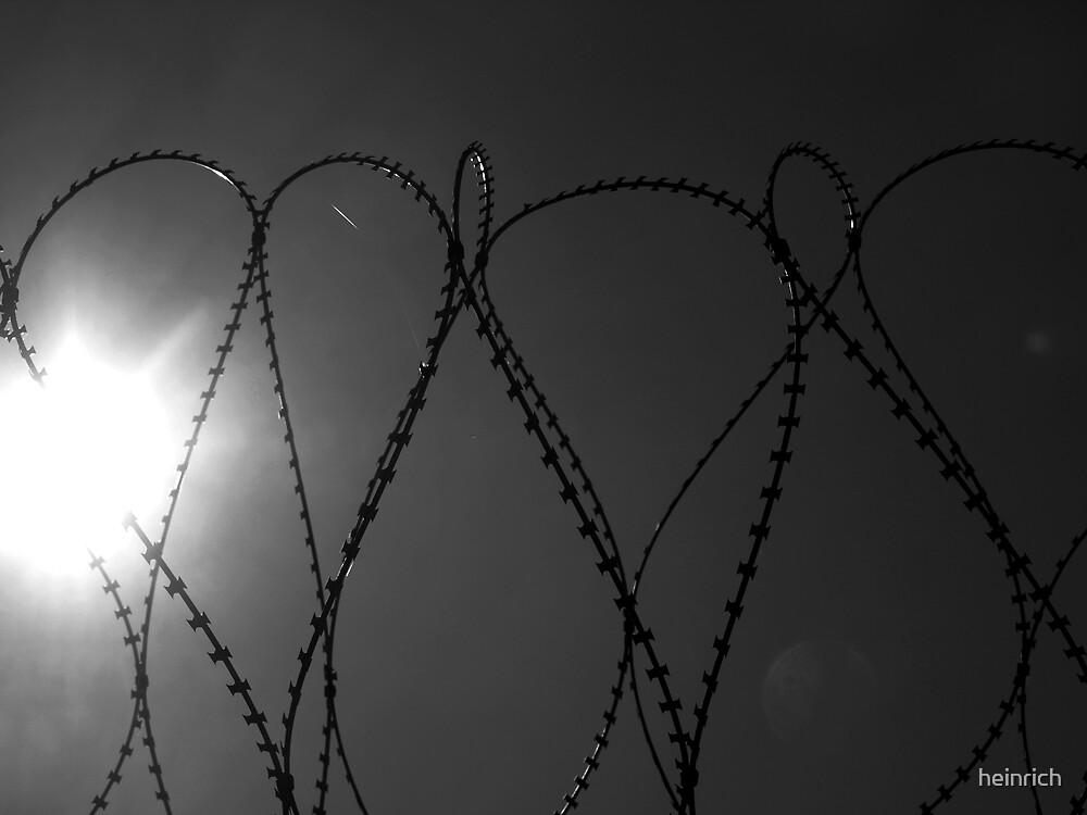Heart by heinrich