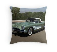 TLC in Review !  Throw Pillow