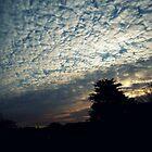 Hilltown sunrise by colettelydon