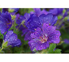Sparkling blue Photographic Print