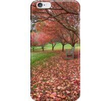 Autumn Views_Mt Wilson iPhone Case/Skin