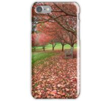 Autumn Views_Mt Wilson iPhone Case/Skin