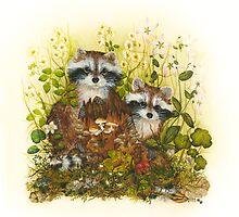 Young Racoons  by Donna  Genovese