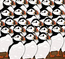 Puffin Birthday Card by Moonlake