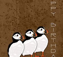 3 Puffins Birthday Card by Moonlake