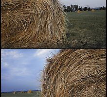 Rural landscape with a haystack by VallaV