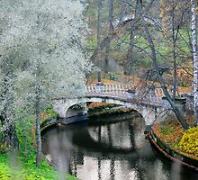 Bridge in the Pavlovsk by torishaa