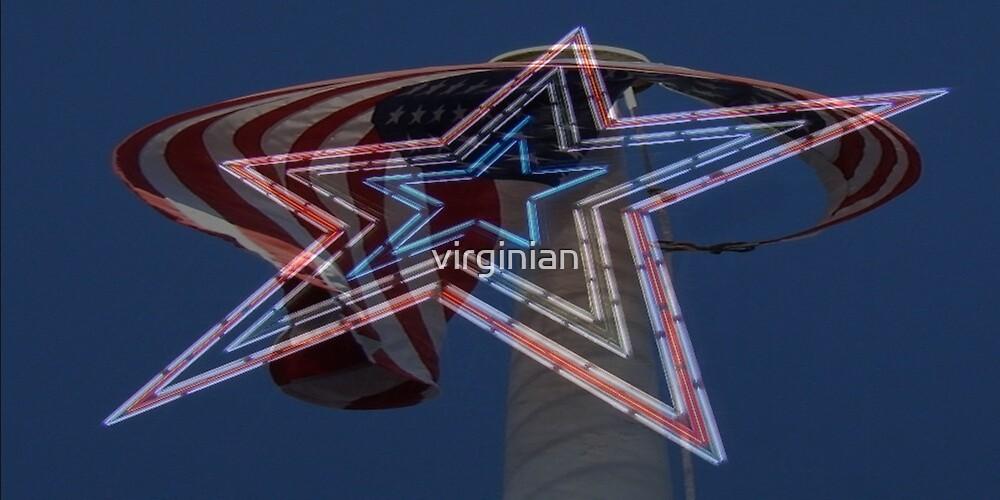 Go America! by virginian