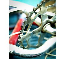 Junked Bicycle Sprocket Photographic Print