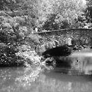 Under the Bridge  by DearMsWildOne