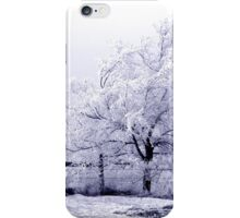 Frost covered tree with fence iPhone Case/Skin