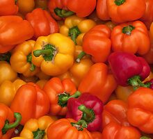 peppers galore- Oregon farmer's market by David Chesluk