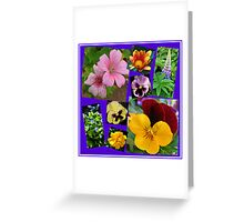 June Garden Flowers Collage Greeting Card
