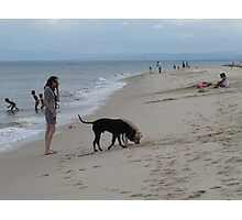 'GUESS WHAT THE DOGS JUST FOUND!' Bribie Island, Q. Photographic Print