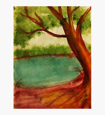 Old tree along shore path, watercolor Photographic Print