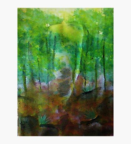 Forest of Trees,, watercolor Photographic Print