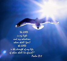 The Lord Is My Light and My Salvation by Corri Gryting Gutzman