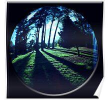 lake daylesford shadows Poster