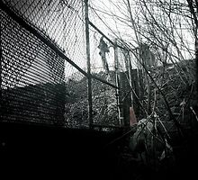 Fence by Jared Plock