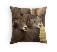 Loungn' Rams Throw Pillow