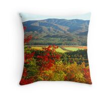 CADES COVE FROM RICH MTN. Throw Pillow