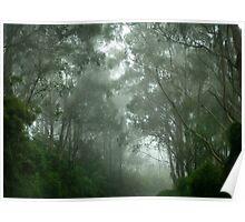 Cape Otway Fog Poster
