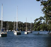 Yachts at rest by waxyfrog