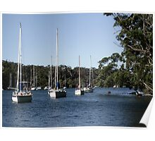 Yachts at rest Poster