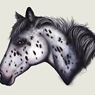 Appaloosa by LauraMSS