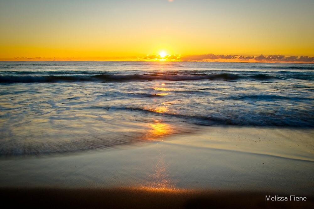 Golden Morning by Melissa Fiene