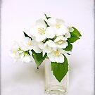 Arrangement in White by adygarden