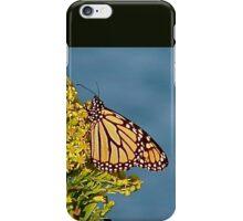 Monarch Migration  iPhone Case/Skin
