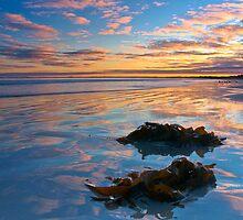 Reflection of Long Beach, Robe, SA by richard02162003