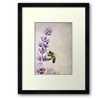 I love to work for my Honey.... Framed Print