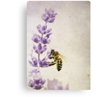 I love to work for my Honey.... Canvas Print