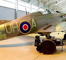 Hurricane - RAF Cosford by Colin  Williams Photography