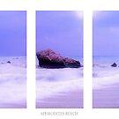 Blue Horizon Triptych by Aj Finan