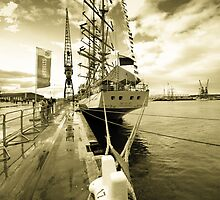Tall Ship at Harlepool by Dave Hudspeth