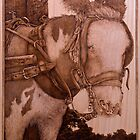 'Compliance', a Pyrography picture of a harnessed donkey by DavidStanley