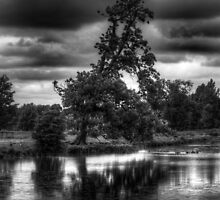 Claydon Lake by Ian Parry